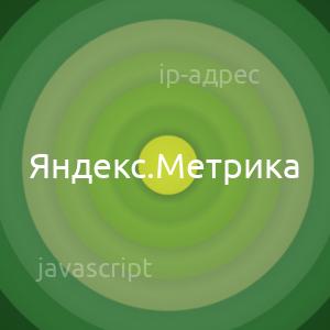 Добавить в IP-адрес посетителя в отчет Яндекс метрики